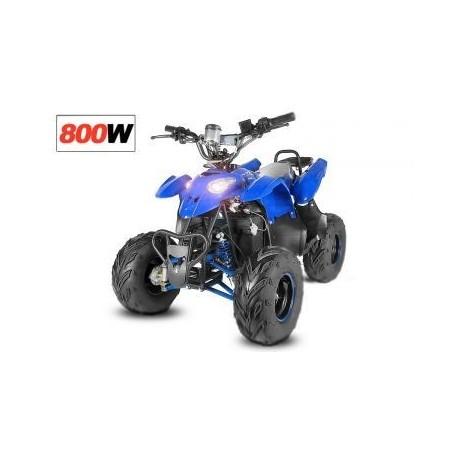 ECO RAZER 800W 36V R6