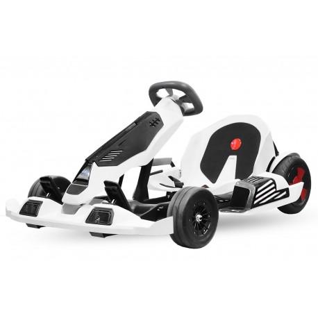 Eco Go Kart K1 2x 350W litio 54V 4Ah
