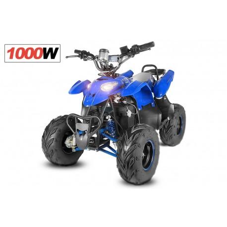 ECO RAZER 1000W 48V R7