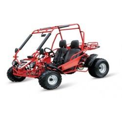 buggy Maxi 200cc automático CVT R10 E-start